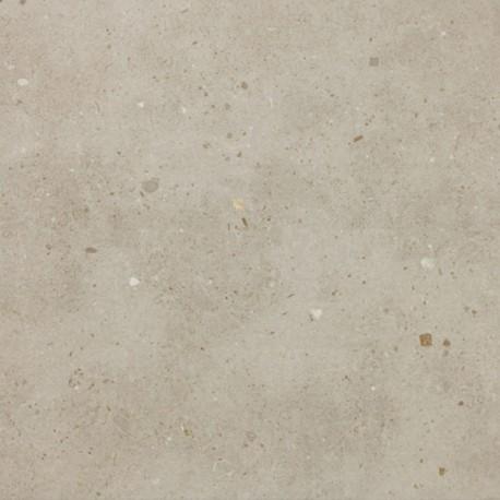 GRANIT GRIS CLAIR REF: GDG50710